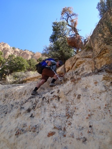 Coconino scramble on the Bill Hall Trail in the Grand Canyon